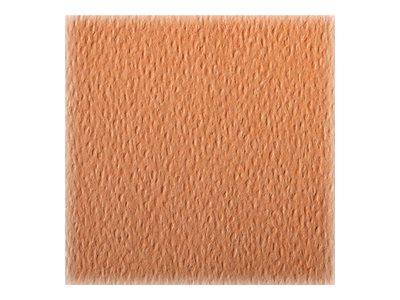 Clairefontaine - Papier dessin couleur à grain - feuille 50 x 65 cm - saumon
