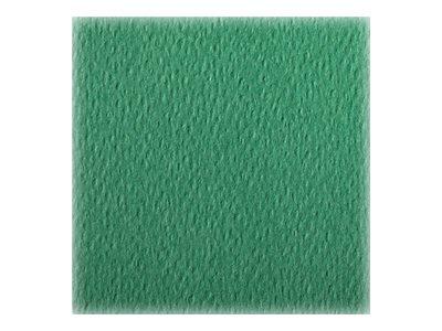Clairefontaine - Papier dessin couleur à grain - feuille 50 x 65 cm - vert foncé