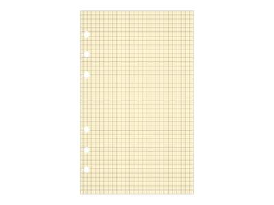 Exacompta Exatime 17 - Recharge  pour organiseur - bloc quadrillé - 10,5 x 17,2 cm