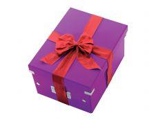 Leitz Click & Store - Boîte de rangement- A4 - violet métallisé