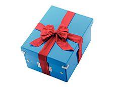 Leitz Click & Store - Boîte de rangement- A4 - bleu métallisé