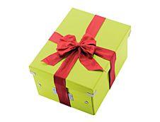 Leitz Click & Store - Boîte de rangement- A4 - vert métallisé