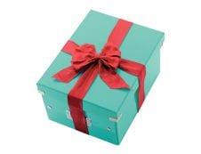Leitz Click & Store - Boîte de rangement- A4 - bleu iceberg