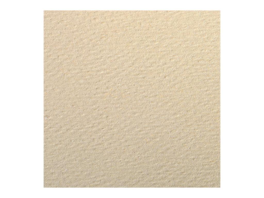 Clairefontaine - Papier dessin couleur à grain - feuille 50 x 65 cm - lichen